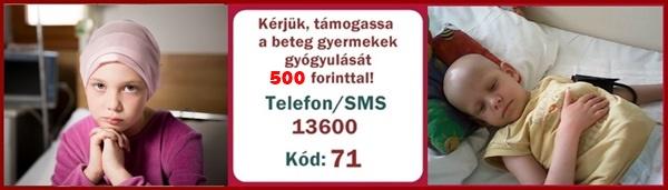 tobb_mint_5000_hivas_erkezett_11_41140.jpg