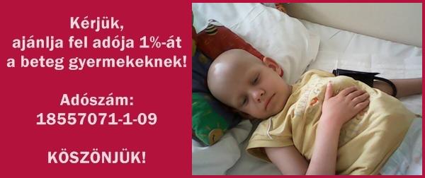 17_eve_segitjuk_a_leukemias_es_daganatos_gyermekeket_1_17905.png