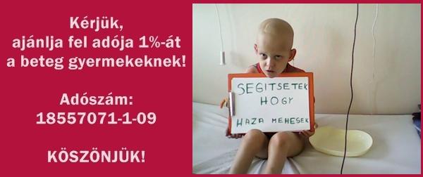 17_eve_segitjuk_a_leukemias_es_daganatos_gyermekeket_2_17906.png